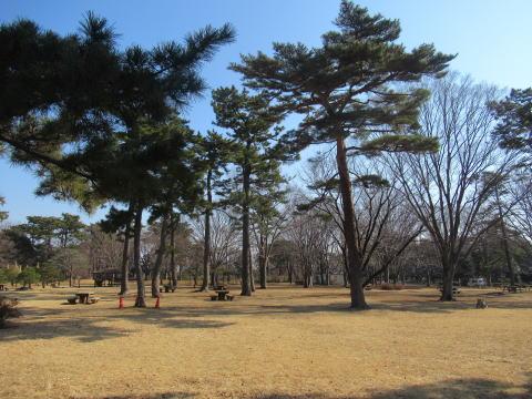 八柱霊園-広場